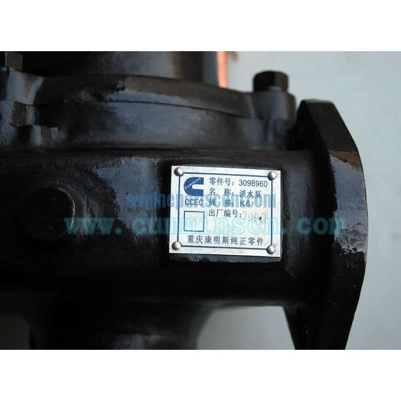 cummins pump water 3098960
