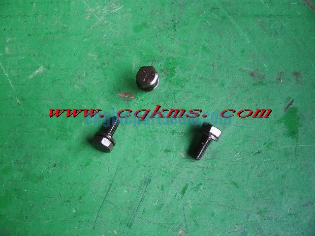 diesel screw 3033378,cummins COTONOU,