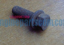 screw hexagon head cap 3040838,cummins CAMPECHE,