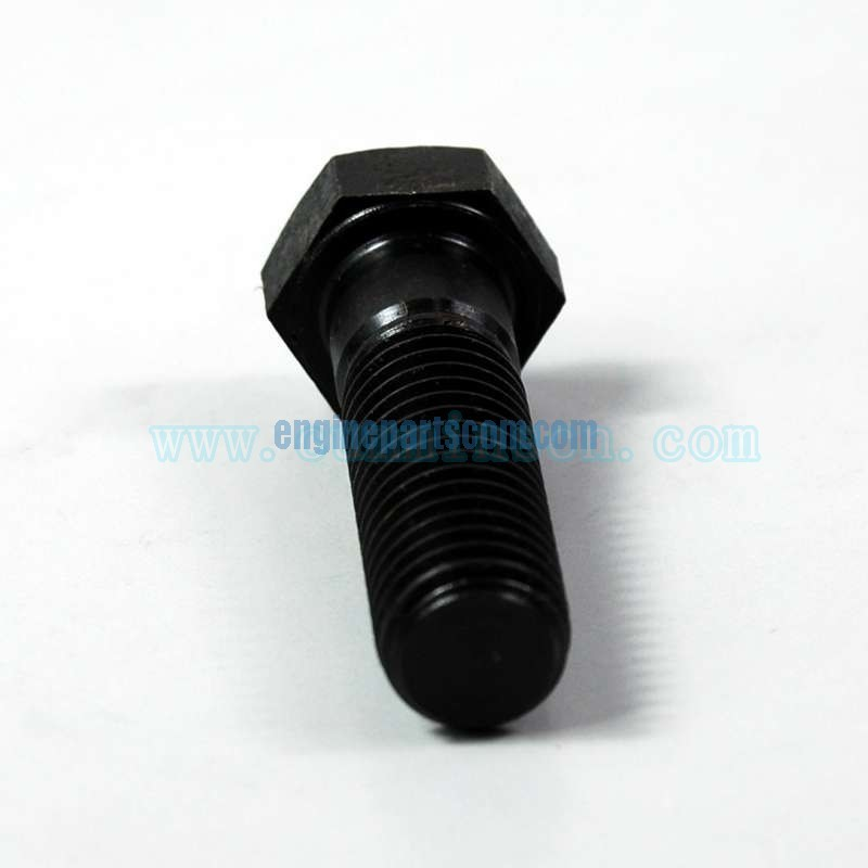 diesel screw,hexagon dead cap 3165414,cummins CRAIOVA,