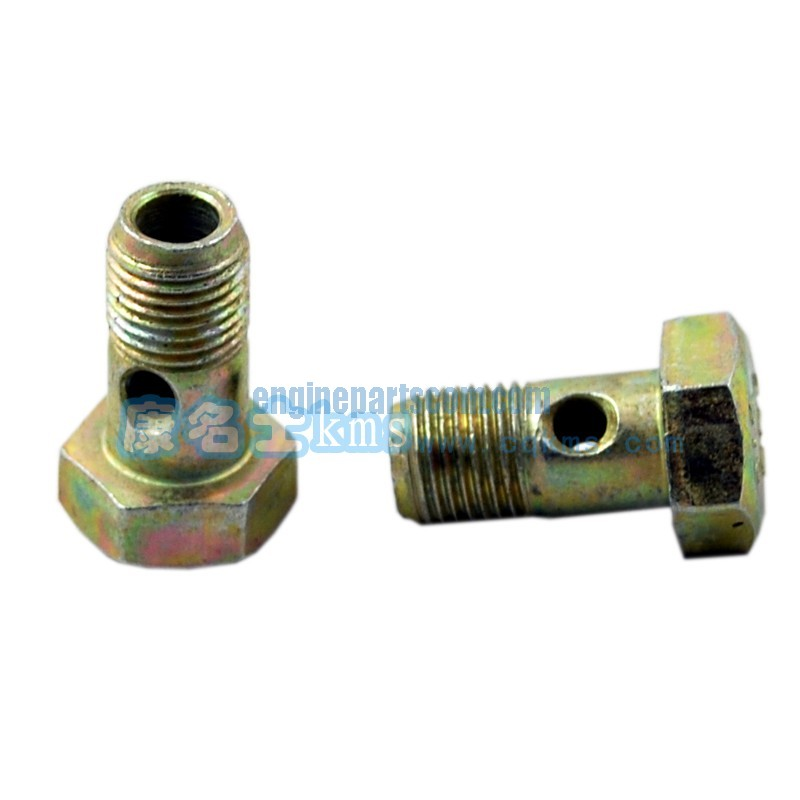 auto screw,lock 3918002,cummins CARNOT,