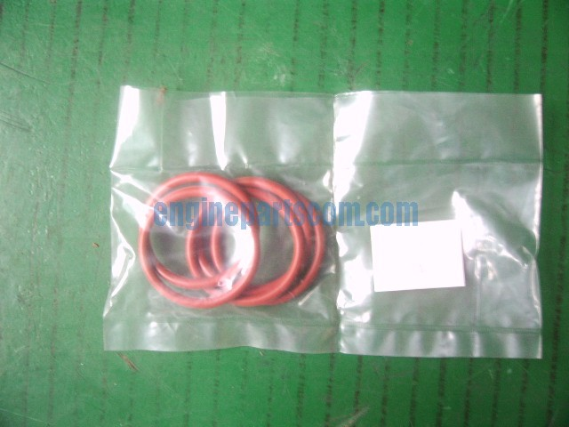 engine seal,d ring 216187