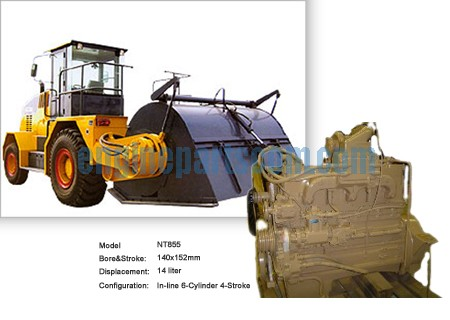 NTA855 Soil Stabilizer interchangeable parts
